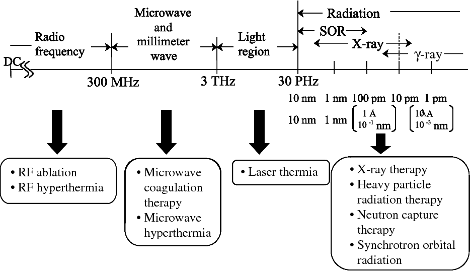 PDF] RF / Microwave Interaction with Biological Tissues - Semantic
