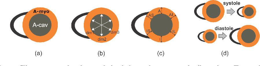 Figure 1 for Left ventricle quantification through spatio-temporal CNNs