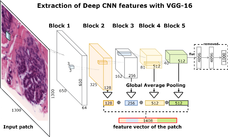 Figure 3 for Deep Convolutional Neural Networks for Breast Cancer Histology Image Analysis