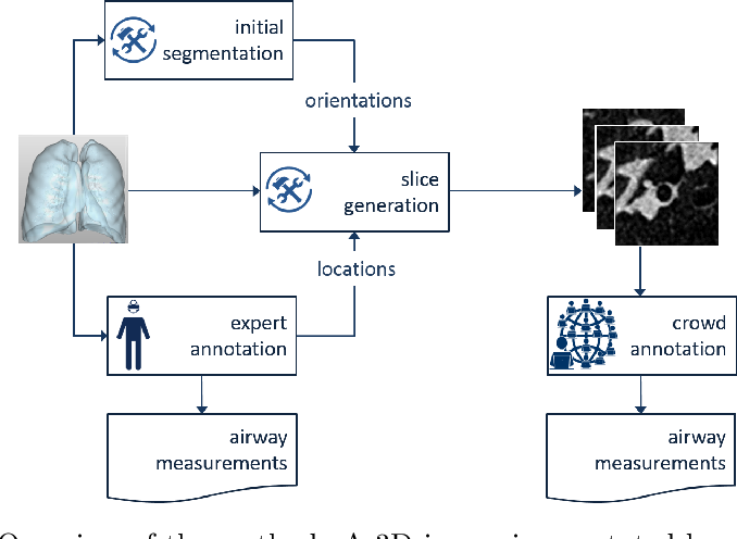 Figure 1 for Crowdsourcing Airway Annotations in Chest Computed Tomography Images