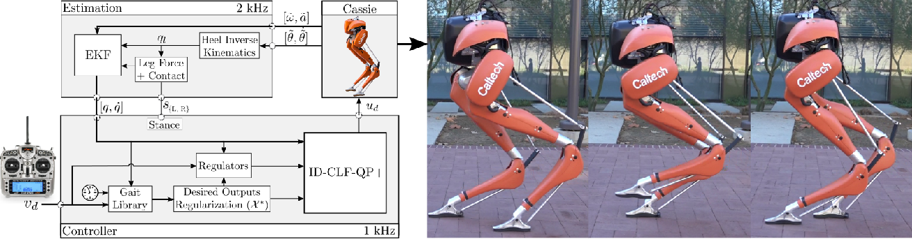 Figure 3 for Control Lyapunov Functions for Compliant Hybrid Zero Dynamic Walking