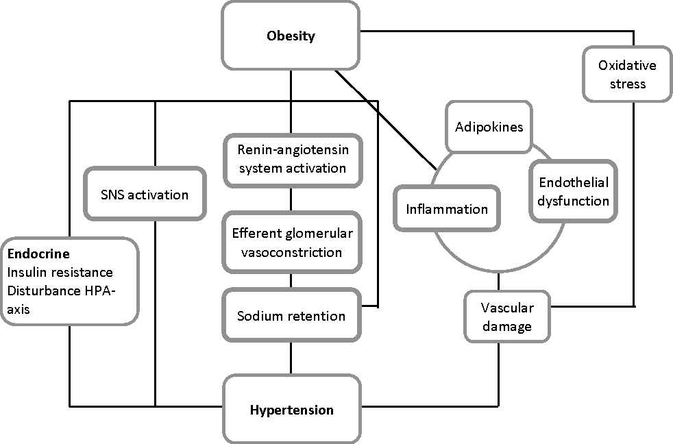 Hypertension And Childhood Obesity