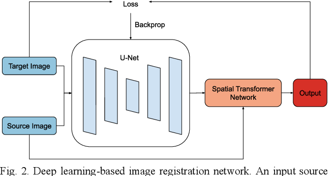 Figure 2 for Exploring Intensity Invariance in Deep Neural Networks for Brain Image Registration