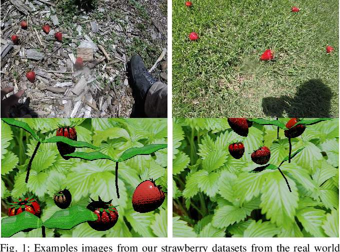 Figure 1 for Strawberry Detection using Mixed Training on Simulated and Real Data
