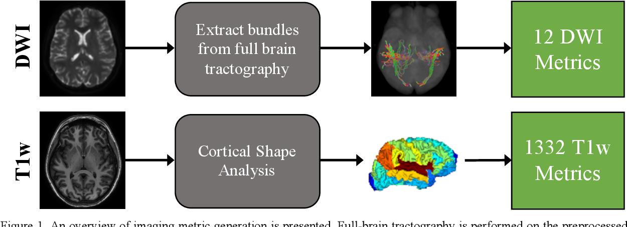 Figure 1 for MRI correlates of chronic symptoms in mild traumatic brain injury