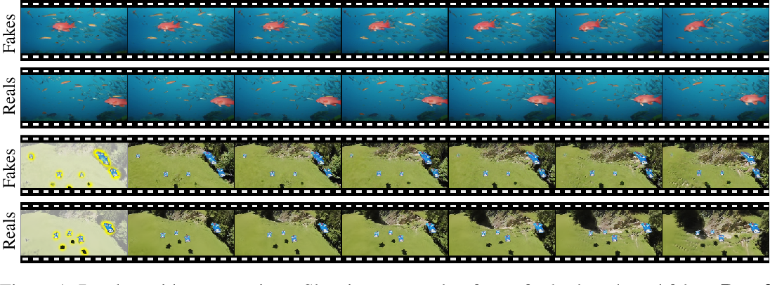Figure 1 for Hierarchical Patch VAE-GAN: Generating Diverse Videos from a Single Sample