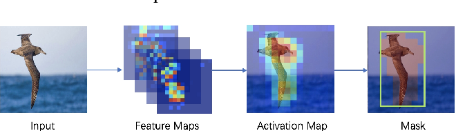 Figure 3 for Three-branch and Mutil-scale learning for Fine-grained Image Recognition (TBMSL-Net)
