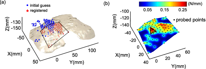 Figure 2 for Using Bayesian Optimization to Guide Probing of a Flexible Environment for Simultaneous Registration and Stiffness Mapping
