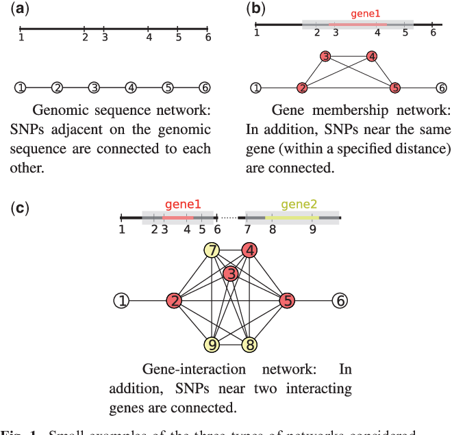 Figure 1 for Efficient network-guided multi-locus association mapping with graph cuts