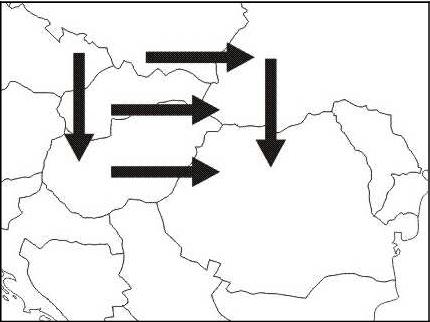 Echinococcus Multilocularis Confirmed In Romania Sndor