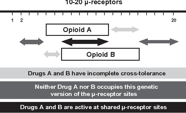 Figure 1 Opioid tolerance/incomplete cross-tolerance.