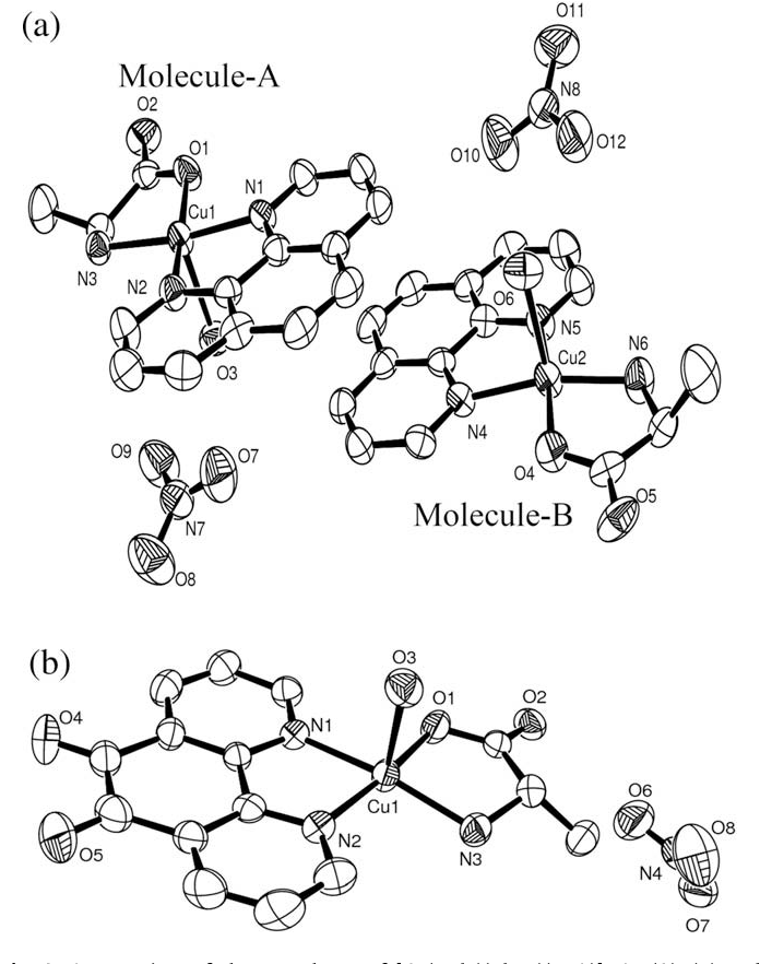Figure 3 From New Ternary Copper Ii Complexes Of L Alanine And
