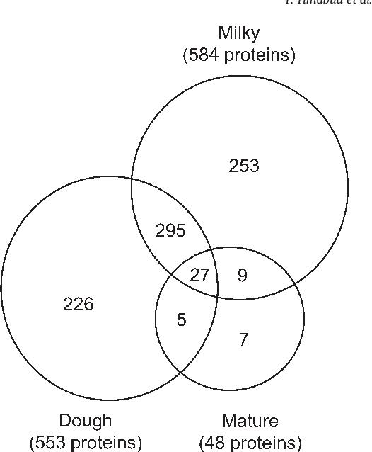 Gel Freelabel Free Proteomic Analysis Of Developing Rice Grains