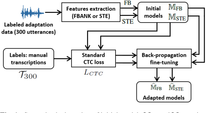 Figure 1 for Multiple-hypothesis CTC-based semi-supervised adaptation of end-to-end speech recognition