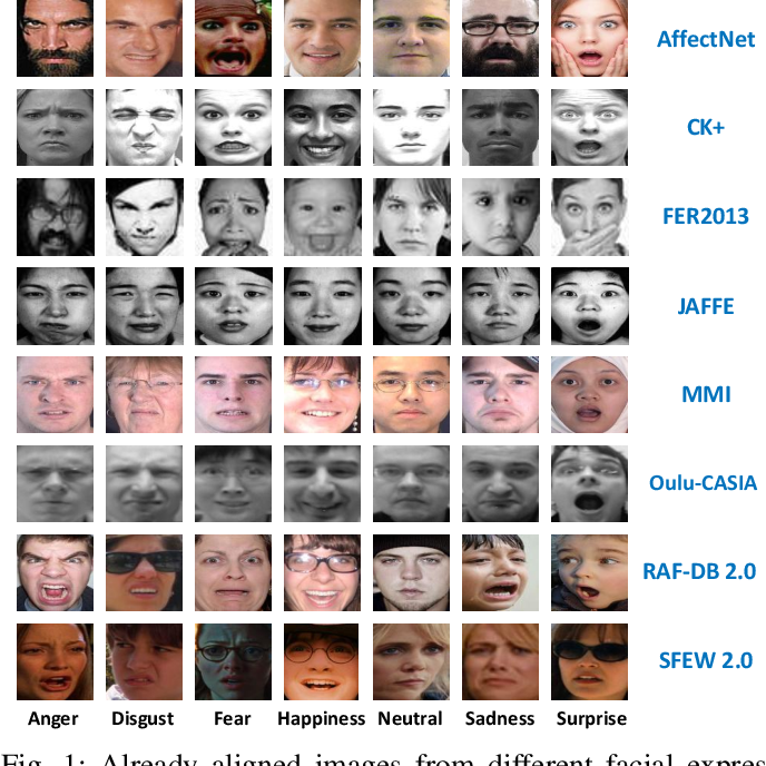Figure 1 for A Deeper Look at Facial Expression Dataset Bias