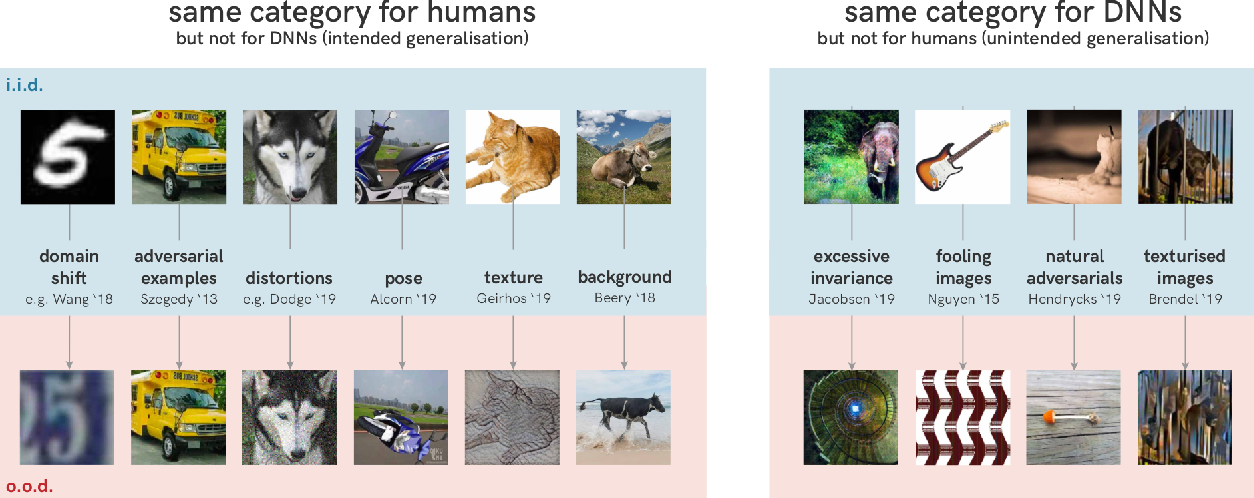 Figure 3 for Shortcut Learning in Deep Neural Networks