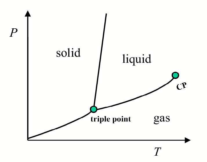 Figure 2.1: Projection of the P T surface in the PT plane.