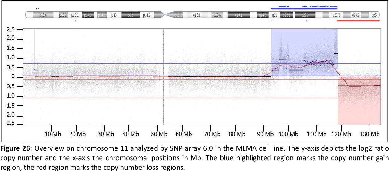 Figure 26: Overview on chromosome 11 analyzed by SNP array 6.0 in the MLMA cell line. The y-axis depicts the log2 ratio copy number and the x-axis the chromosomal positions in Mb. The blue highlighted region marks the copy number gain region, the red region marks the copy number loss regions.