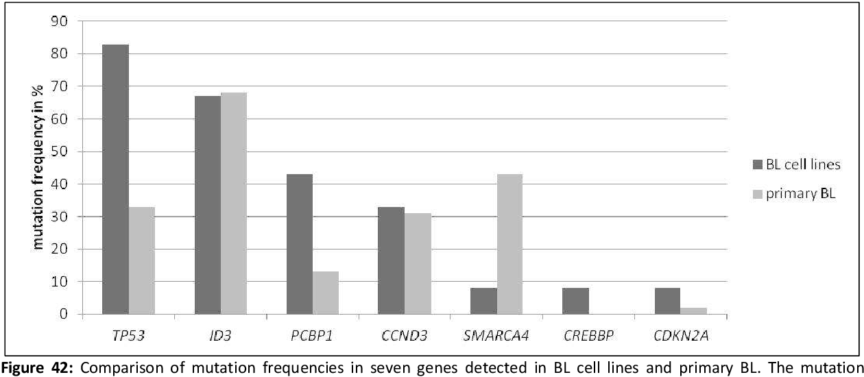 Figure 42: Comparison of mutation frequencies in seven genes detected in BL cell lines and primary BL. The mutation frequency of ID3, PCBP1, SMARCA4 of the primary BL were determined within this thesis, whereas the mutation frequencies of TP53 [72],[101],[170],[228], CCND3 [133], [170], CREBBP [72],[170] and CDKN2A [72],[341] have been already published.