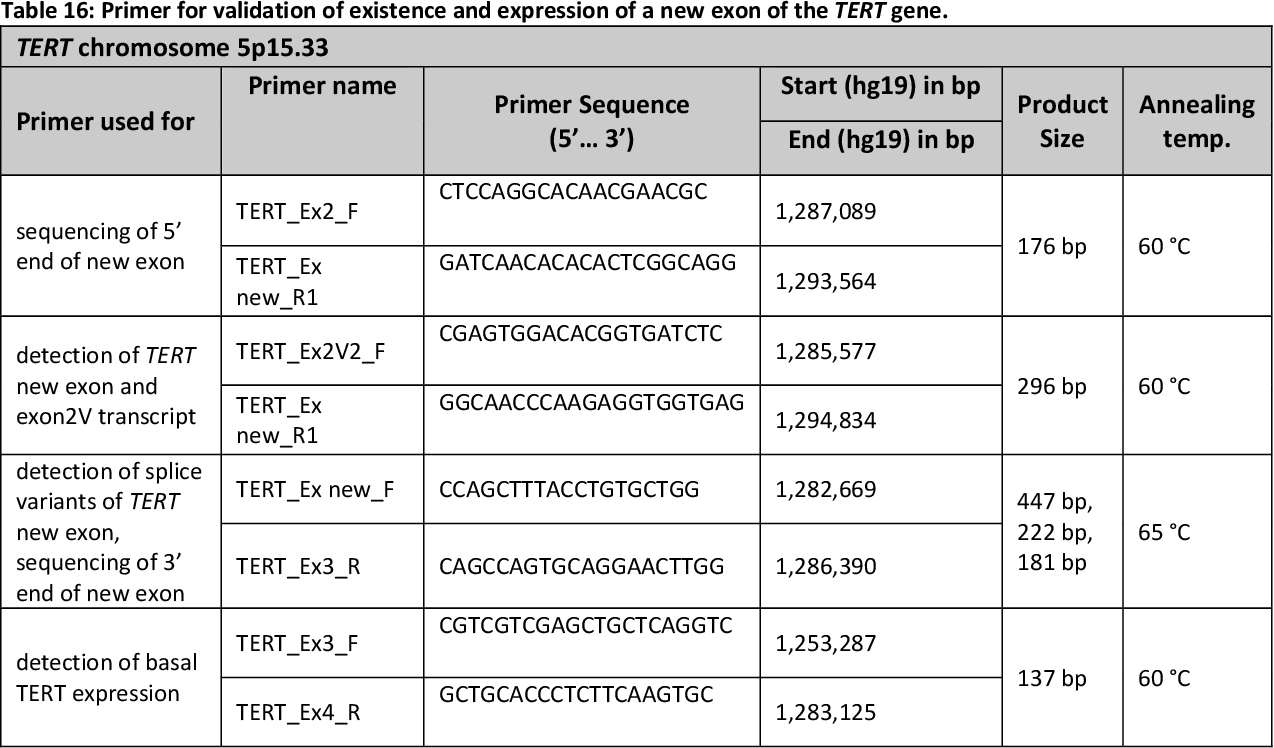 Table 16: Primer for validation of existence and expression of a new exon of the TERT gene.