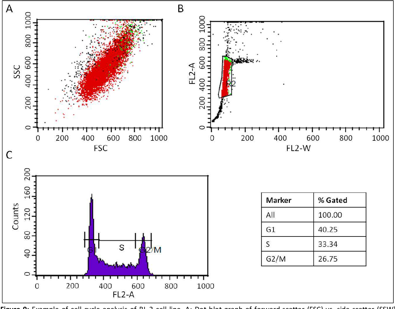 Figure 9: Example of cell cycle analysis of BL-2 cell line. A: Dot blot graph of forward-scatter (FSC) vs. side-scatter (SSW) signals of the cell population. B: Depicts the two-parameter dot blot of FL2-W vs. FL2-A. The gate, depicted here as box with R2 label, contains solely single cells. C: Histogram of FL2-A, representing the relative DNA amount vs. the count of cells (counts). The cell cycle phases are indicated by the respective lines and labeled as G1 (G1-phase), S (S-phase) and G2/M (G2/M-phase). The table shows the amount of cells in the respective cell cycle phases. % Gated refers to the amount of cells gated in G1-, S- and G2/M-phases in the histogram. FL2-W, fluorescence channel 2 width; FL2-A, fluorescence channel 2 area; counts, number of cells.