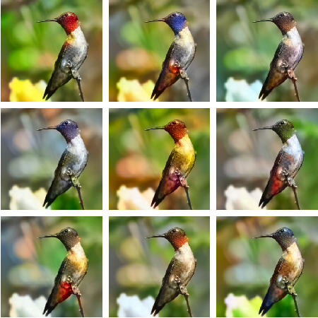 Figure 1 for Conditional Invertible Neural Networks for Diverse Image-to-Image Translation