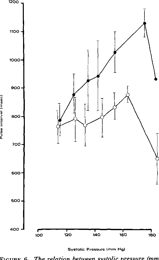 FIGURE 6 The relation between systolic pressure (mm Hg) and pulse interval (msec) in 10 sheep when systolic pressure was increased by infusion of phenylephrine (9) and by infusion of angiotensin (O). Bars represent ± SE of mean.