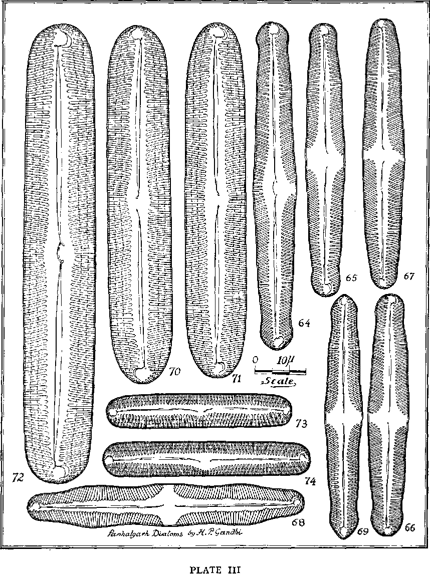 figure 64-66