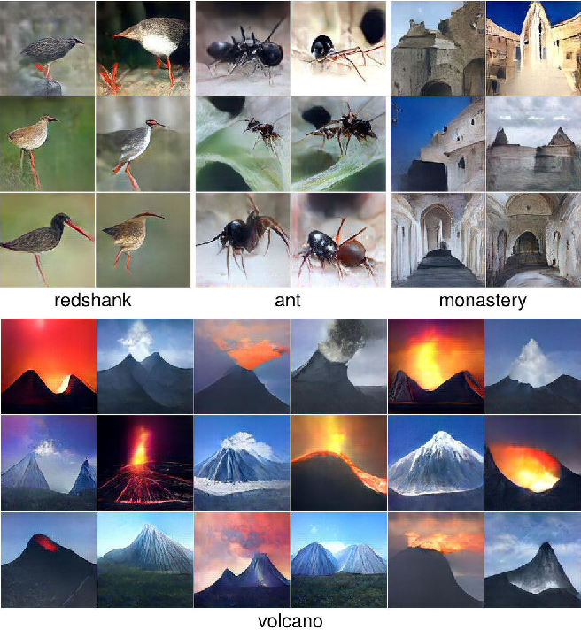 Figure 1 for Plug & Play Generative Networks: Conditional Iterative Generation of Images in Latent Space