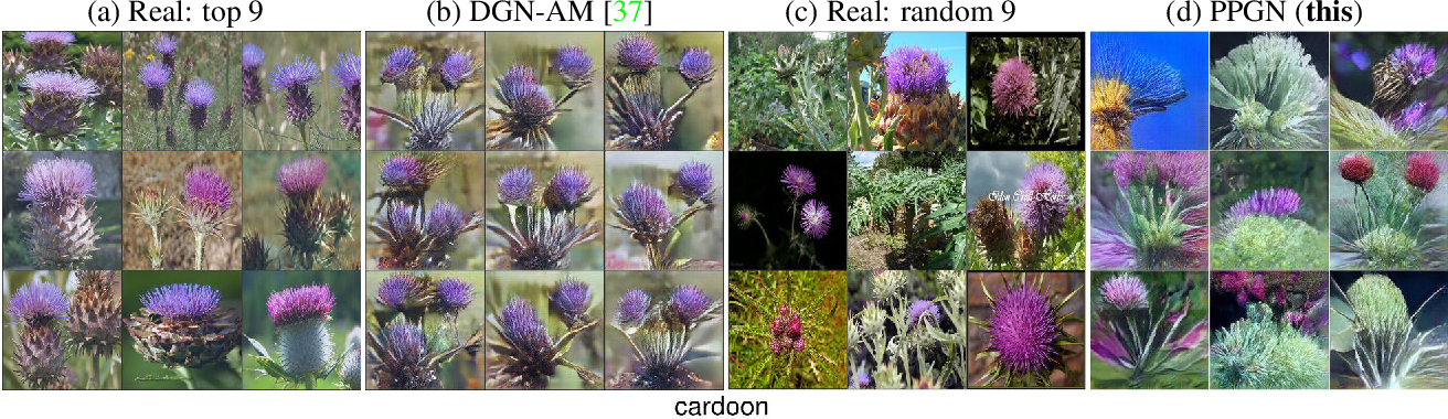 Figure 2 for Plug & Play Generative Networks: Conditional Iterative Generation of Images in Latent Space