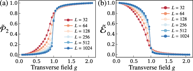 Figure 3 for Topological Persistence Machine of Phase Transitions