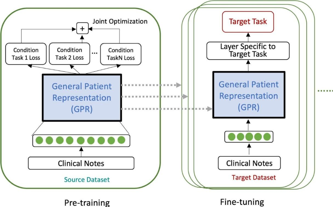 Figure 1 for Generalized and Transferable Patient Language Representation for Phenotyping with Limited Data