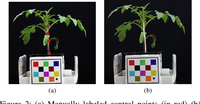 Figure 2 for Plant Stem Segmentation Using Fast Ground Truth Generation