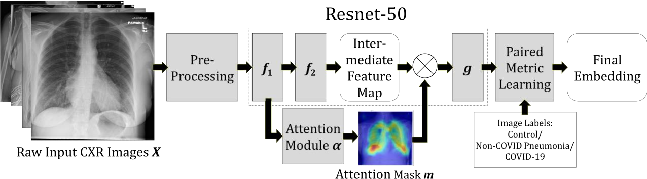 Figure 1 for Deep Metric Learning-based Image Retrieval System for Chest Radiograph and its Clinical Applications in COVID-19