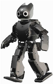 Figure 4 for RANSAC: Identification of Higher-Order Geometric Features and Applications in Humanoid Robot Soccer
