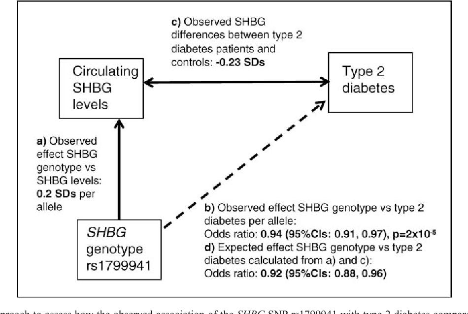 Excess sex hormone binding globulin shbg