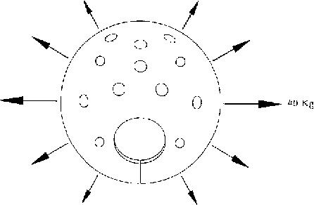 Neospora Caninum Agprthrpttiss Fixedordimmune Stain Semantic