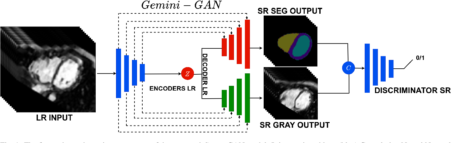 Figure 2 for Joint Semi-supervised 3D Super-Resolution and Segmentation with Mixed Adversarial Gaussian Domain Adaptation