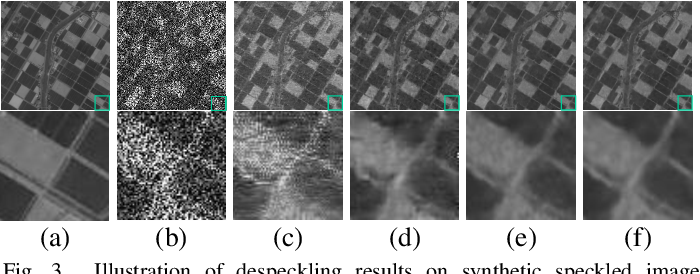Figure 3 for A Practical Solution for SAR Despeckling with Only Single Speckled Images
