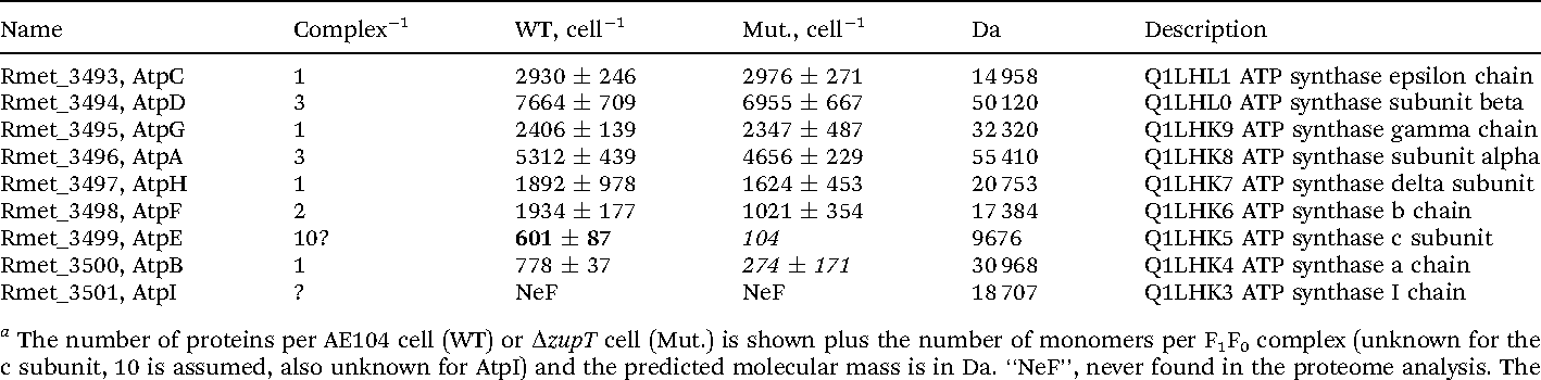 Table 1 Number of subunits of the F1F0 ATPase complex a