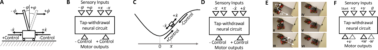 Figure 2 for Re-purposing Compact Neuronal Circuit Policies to Govern Reinforcement Learning Tasks