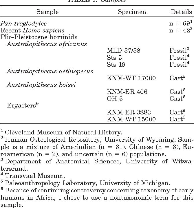 Foramen Magnum Position Variation In Pan Troglodytes Plio
