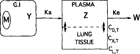 Fig. 1 : Scheme showing the process of drug transfer in the various compartments: dosage form (M), 01, plasma and lung tissue.