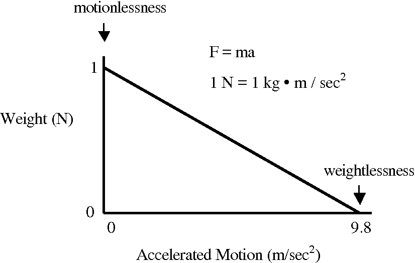 Figure 3 from Terminal velocity ( 1 g ) Attached ( 1 g ...