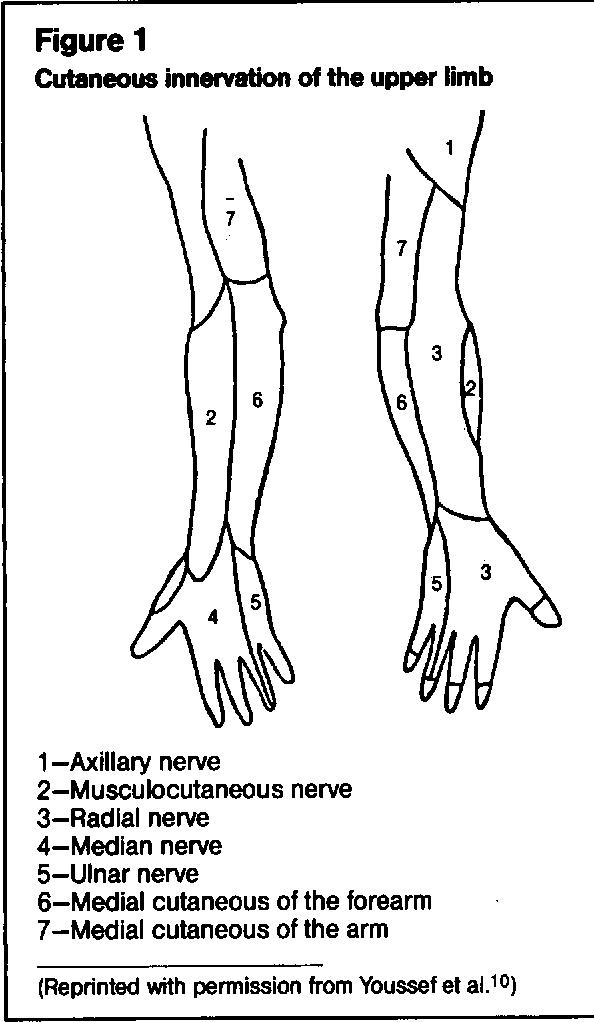 Figure 1 Cutaneous innervation of the upper limb