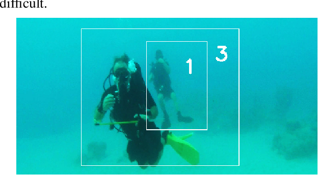 Figure 2 for Real-Time Multi-Diver Tracking and Re-identification for Underwater Human-Robot Collaboration