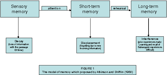 two different theories of memory processing Levels of processing is an advanced theory to the multi store model it elaborates much deeper into the memory process by taking into account processing, distinctiveness and organisation which all are thought to play a key role in how we store memory.