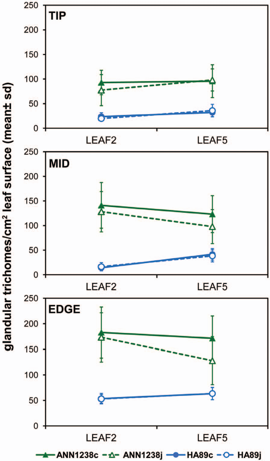 Figure 2 from Response of Sunflower (Helianthus annuus L.) Leaf ...