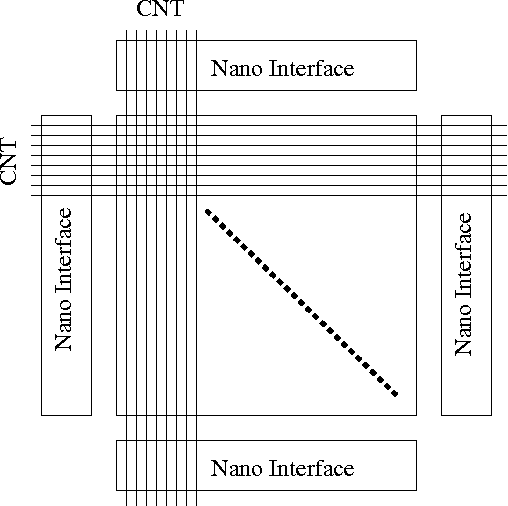 Reconfigurable Double Gate Carbon Nanotube Field Effect Transistor
