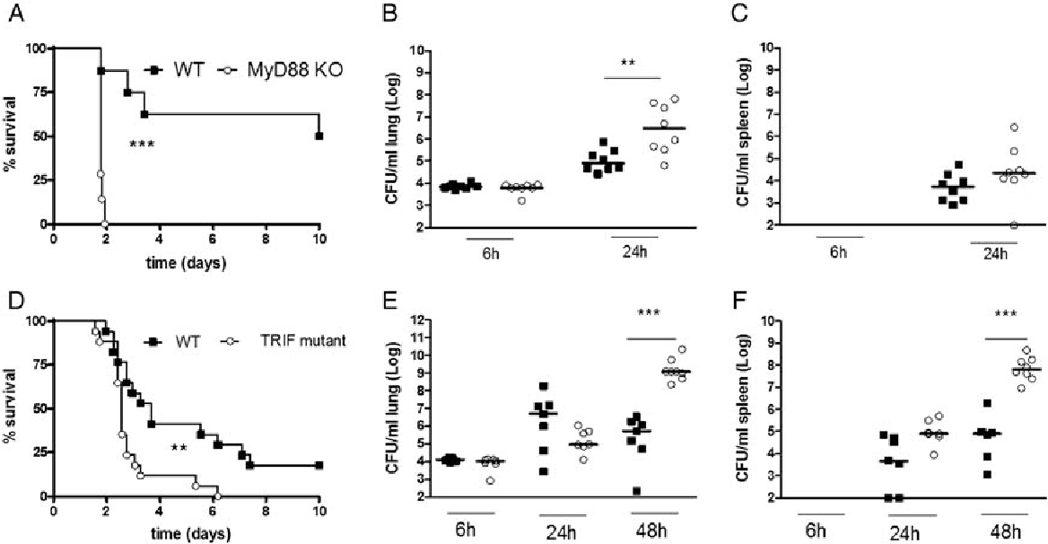 Differential roles of myd88 and trif in hematopoietic and resident figure 1 ccuart Images